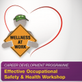 CAREER DEVELOPMENT PROGRAMME